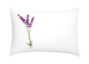 The Lavender & Manuka Pillow